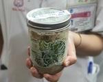 Tìm mua 'thuốc mồ côi' hơn 180 triệu để cứu 2 vợ chồng bị liệt vì ăn pate Minh Chay