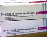Sẽ đánh giá lâm sàng tính an toàn, tính sinh miễn dịch của vaccine COVID-19 khi về tới Việt Nam