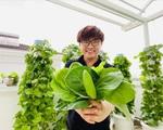 Đại Nghĩa chia sẻ kinh nghiệm trồng rau trên sân thượng cực nhanh tốt mà không tốn nhiều thời gian