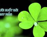 8 công thức giúp bạn thu hút may mắn trong đời