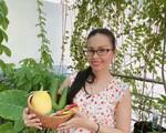 Ca sĩ Cẩm Ly tỉ mẩn trồng rau trên sân thượng để phục vụ bữa cơm hàng ngày