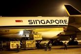400 con bò tơ đi... máy bay từ Úc về Việt Nam