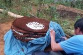 Thương lái Trung Quốc lùng mua tổ ong đất nặng 10kg ở Lào Cai