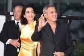 Vợ George Clooney lộng lẫy với váy satin vàng khi ra mắt phim của chồng