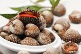Điểm mặt các loại hải sản chứa độc tố