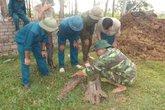 Nghệ An: Phát hiện quả rocket  nằm sâu dưới lòng đất