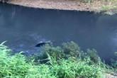 Nam thanh niên chết chìm cùng ô tô dưới suối