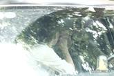Hải Băng bị bắt gặp hôn Thành Đạt say đắm trong xe hơi
