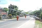 Hoảng hốt vì cột điện cao thế bật gốc chắn ngang đường