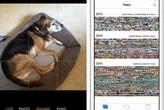 Những thủ thuật bí ẩn với iPhone giúp chụp ảnh tốt hơn