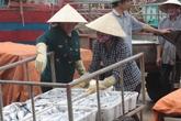 Ngư dân miền Trung được mời họp xin ý kiến về đền bù của Formosa