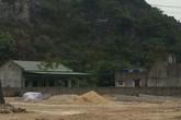 Xưởng gỗ dăm trái phép ở Thanh Hóa: Vì sao chỉ đạo của tỉnh bị phớt lờ?