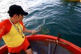 """Lực lượng cứu hộ """"chiến đấu"""" với... sứa biển ở Đà Nẵng"""