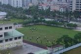 Hà Nội: Phụ huynh trường quốc tế đội rét nhặt rác lúc sáng sớm