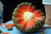 Những lợi ích không ngờ này khiến nhà giàu đua nhau mua trái cây ngoại lai