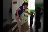 Cô giáo đánh học sinh bằng dép sẽ bị xử lý thế nào?