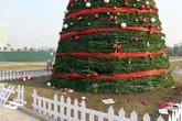 """Đề nghị công an vào cuộc vụ cây thông Noel """"khủng"""" nhất Bắc Giang bị phá tan tác"""