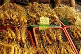 Việt Nam là thị trường lớn thứ 5 nhập khẩu nhân sâm Hàn Quốc