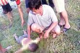 Trượt chân xuống ruộng lúa ngập nước, hai cháu bé đuối nước tử vong