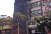 Thông tin tiếp vụ tòa nhà sai phép tại 91 Lý Thường Kiệt: Chủ tịch UBND TP.Hà Nội chỉ đạo xử lý nghiêm