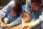 Chị gái 12 tuổi vào phòng mổ cắt dây rốn, đón em trai chào đời