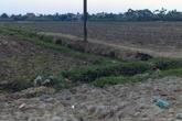 Một giáo viên tiểu học tử vong ngoài cánh đồng