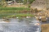 Huyện Thanh Sơn (Phú Thọ): Dân khổ vì ô nhiễm nguồn nước