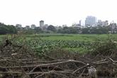 Hà Nội: Nguy cơ dịch bệnh từ hồ nước ngập rác thải
