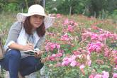 Âm thầm nghỉ việc, vay nặng lãi trồng 6.000 gốc hồng