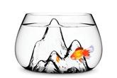 Không thể rời mắt khỏi 4 mẫu bể cá đẹp một cách kì lạ này