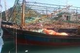 Xử lý nghiêm trách nhiệm tập thể, cá nhân vụ tàu cá ngư dân vừa đóng đã hỏng