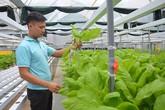 Kỹ sư bỏ lương 15 triệu ở công ty nước ngoài về làm nông dân