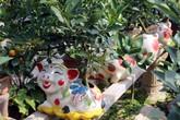 Heo vàng 5 triệu cõng quất bonsai chào tết Kỷ Hợi 2019