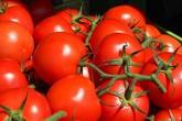 Chỉ nhờ 1 thìa nhỏ này, cây cà chua nào cũng sai quả căng mọng, vị ngon khỏi chê