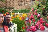 Ngưỡng mộ ông chồng đảm dành 2 tháng tự bốc gạch, xây vườn bậc thang cho vợ trồng hoa