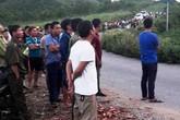 Nghệ An: Dựng cáp viễn thông, 4 người bị điện giật tử vong