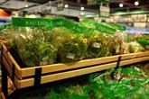 """Khi siêu thị không chỉ đẹp, tiện lợi mà còn là """"sân chơi"""" cho cả gia đình"""