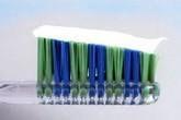 Chất trong kem đánh răng có thể ngăn ngừa ký sinh trùng sốt rét kháng thuốc