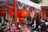 Học trò THCS Đằng Hải hào hứng với buổi ngoại khóa chợ Xuân