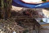 Nghệ An: Nghi án 2 người thương vong do bị sát hại