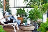 """Tạo """"vườn xanh"""" ở ban công với bất chấp diện tích lớn nhỏ"""