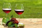 Chuyển từ rượu mạnh sang rượu vang 'cho nhã' để tránh bệnh hiểm về gan: SAI BÉT