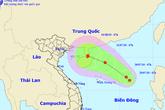 Xuất hiện vùng áp thấp có thể mạnh thành bão giật cấp 8 trên biển Đông