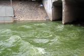 Hơn 800.000m3 nước từ hồ Tây đang ồ ạt xả vào sông Tô Lịch