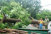Bão số 4 đổ bộ miền Trung, gây mưa lớn nhiều nơi