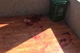Mâu thuẫn trên giảng đường, nam sinh lớp 10 bị bạn đâm tử vong