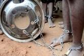 Giải cứu hàng trăm trẻ em bị xiềng xích trong trường học ở Nigeria