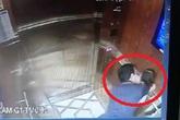 """Vẫn còn khả năng hủy quyết định khởi tố ông Nguyễn Hữu Linh vụ 'nựng"""" bé gái trong thang máy"""