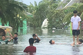 Lũ lụt biến khu nghỉ dưỡng 4 sao thành nơi đánh cá lý tưởng