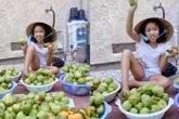 """Việt Hương """"nổi đóa"""" tuyên bố sẽ tìm đến nhà xử lý những người chê con gái nói tiếng Việt không rõ"""